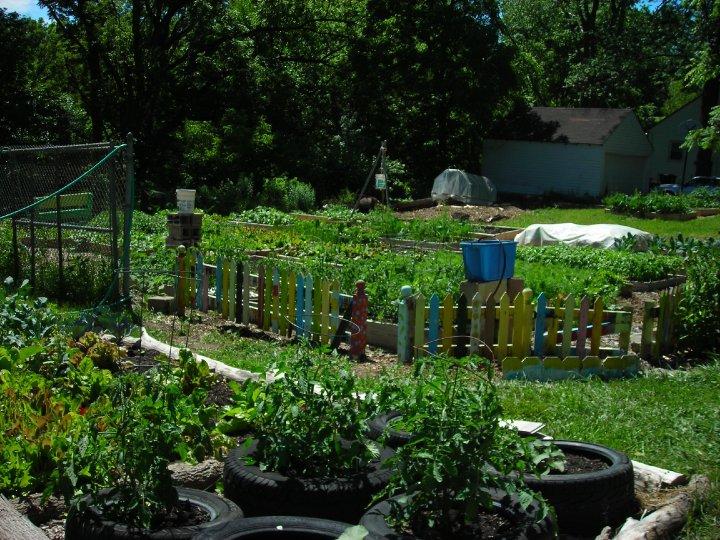 Community Garden Clip Art